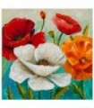 Orange and red poppies 2