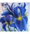 Flores azules - L. Aguado