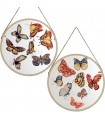 Set 2 cuadros madera 60x60 cm mariposas redondos