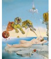 Sueño provocado por el vuelo de una abeja (Dalí)